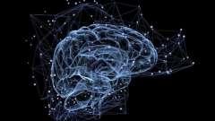 12 Пар черепно-мозговых нервов: таблица. Черепно-мозговые нервы: распределение и краткая характеристика