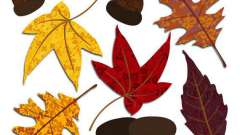 Аппликации для малышей: идеи и шаблоны. Простые аппликации из листьев или цветной бумаги