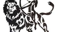 Астрологическая совместимость льва и стрельца: битва темпераментов или красивая любовь?