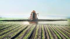 Азотные удобрения - какие это? Какое из азотных удобрений больше других богато азотом?