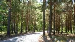 База отдыха «лесные пруды» (тюмень): описание и отзывы
