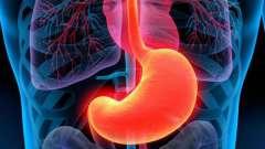 Биопсия желудка: показания, проведение процедуры, где сделать