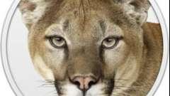 Близнецы и львы - яркий союз!