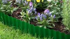 Бордюрная лента: выбор, установка и сферы применения в саду