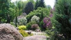 Ботанический сад, харьков - гордость первой столицы