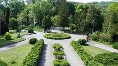 Ботанический сад юфу: как добраться, отзывы