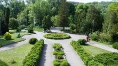 Ботанический сад киева: им. Фомина, на печерске, им. Гришко