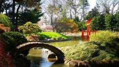 Бруклинский ботанический сад - уголок рая в бетонных джунглях