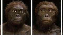 Человек разумный (homo sapiens) - вид, соединяющий в себе биологическую и социальную сущность