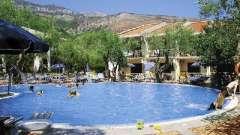 Черногория. «Вилла олива» - идеальное место для отдыха