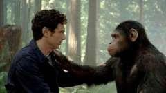 Что свойственно и человеку, и животному: сходства и отличия