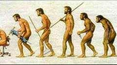 Что такое антропогенез? Этапы, теории, проблемы антропогенеза