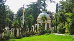 Дендрарий — это оазис в центре мегаполиса