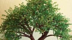 Денежное дерево из бисера – оберег и символ финансового благополучия в вашем доме!
