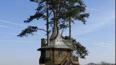 Деревянные дома - лучший выбор для загородного имения