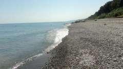 Дикие пляжи адлера: обзор и фото