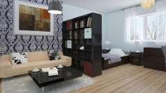 Дизайн интерьера: квартира-студия и идеи ее оформления