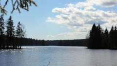 Длинное озеро, ленинградская область: описание, отдых, рыбалка