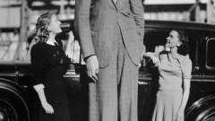 """""""Добрый великан"""", """"украинский гулливер"""" и самый высокий человек в мире"""
