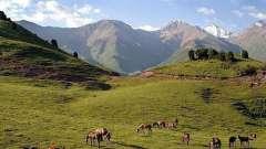 Ферганская область (узбекистан): районы, города