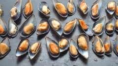 Готовим мидии: рецепт изысканных морепродуктов