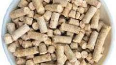 Гранулированные отруби: виды, как правильно употреблять, польза и вред