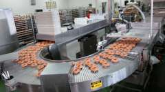 Характеристики аппаратов для изготовления пончиков. Какой аппарат пончиковый лучше