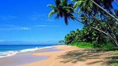 Хиккадува (шри-ланка) – шикарный курорт и рай для дайверов
