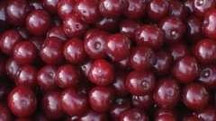 Хранение брусники: замораживаем ягоду, готовим припас или варим варенье