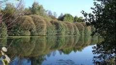Измайловский парк на востоке москвы