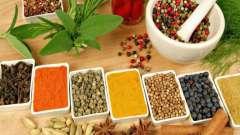 Ягоды можжевельника (плоды): полезные свойства