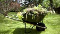 Эффективная борьба с сорняками на огороде