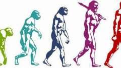 Эволюция в биологии - это... История развития