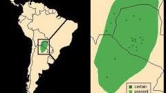 Южная америка: ла-платская низменность