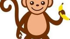 К чему снится обезьяна: сонник разъяснит
