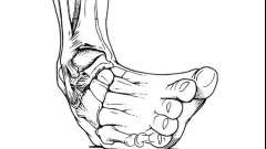 Как лечить вывих ноги в домашних условиях. Что делать при вывихе ноги