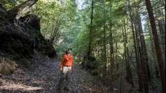 Как ориентироваться по солнцу, чтобы не заблудиться в лесу. Определение сторон горизонта