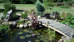 Как создать декоративный водоем в саду своими руками
