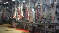Как выбрать оборудование для колбасного цеха. Отечественное и импортное оборудование. Отзывы