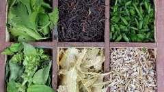 Какие травы для снижения аппетита безопасны для организма