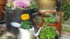 Какое можно сделать украшение для сада и огорода своими руками?