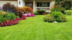 Какой расход семян газонной травы на 1 м2?