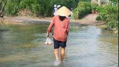 Климат вьетнама: полезная информация для туристов