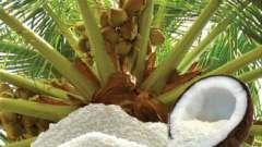 Кокосовая стружка: вред и польза, калорийность, пищевая ценность