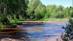 Копанское - озеро для душевного отдыха