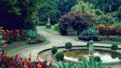 Королевский ботанический сад (сидней) – умиротворяющий природный оазис