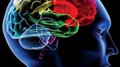 Кт головного мозга: показания и противопоказания
