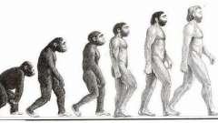 Кто они, предки людей? Основные этапы эволюции человека