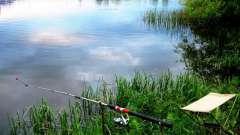 Куда в подмосковье поехать на рыбалку: описание