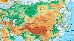 Кунаширский пролив: описание, особенности, фото